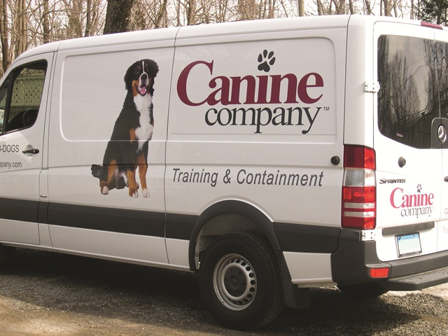 Vinyl Decals Rebranding Fleet Vehicles For Less Article - Business vehicle decals
